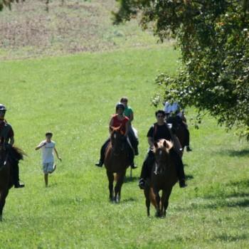 Mehrere Personen auf ihren Pferden in der Natur beim Ausritt Bohnenberg.