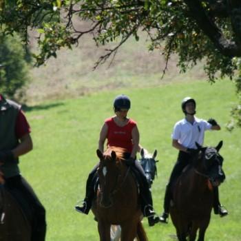 Drei Personen auf ihren Pferden in der Natur beim Ausritt Bohnenberg.
