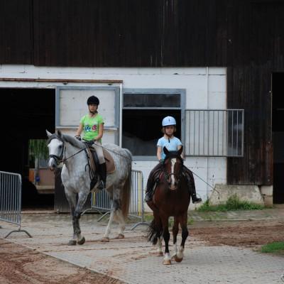 Das Bild zeigt zwei Mädchen auf ihren Pferden.