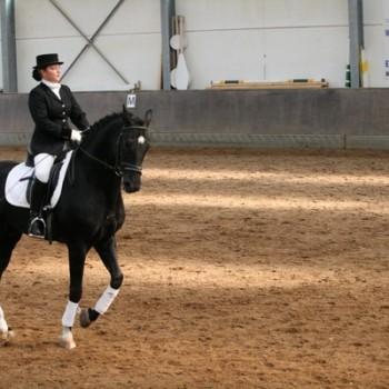 Eine Frau auf einem schwarzen Pferd bei der Dressur in einer Reithalle.