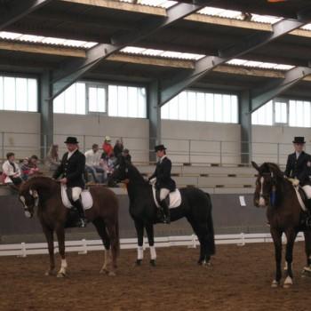 Ein Foto mehrerer Personen mit ihren Pferden in einer Reithalle bei der Dressur.