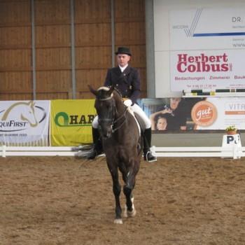 Ein Foto von einem Reiter auf einem braunen Pferd bei der Dressur in einer Reithalle.