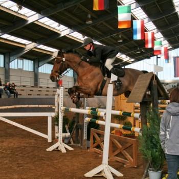 Ein Reiter auf einem braunen Pferd beim Springen über eine Hürde in einer Reithalle.