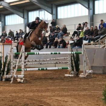 Eine Reiterin auf einem braunen Pferd beim Springen über eine Hürde in einer Reithalle.