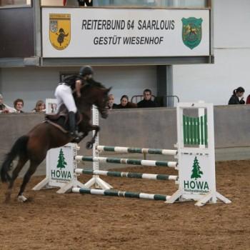 Ein Foto einer Reiterin mit ihrem Pferd beim Springen.
