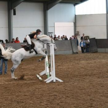 Eine Reiterin auf ihrem weißen Pferd beim Springen über eine Hürde in einer Reithalle.