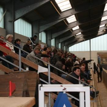 Ein Foto vom Publikum beim Springen.